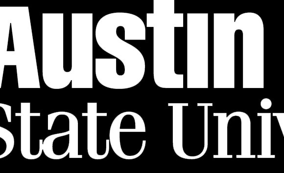 TTU Wordmark White