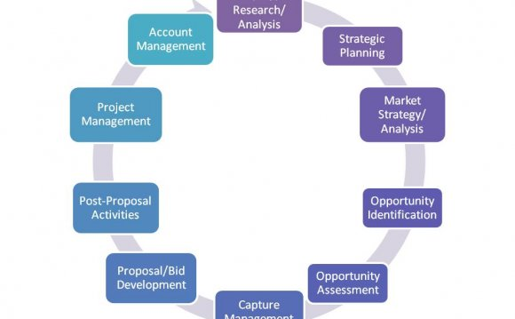 What is Business Development Management?