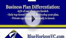Business Plan Development from Bluehorizonvc.com